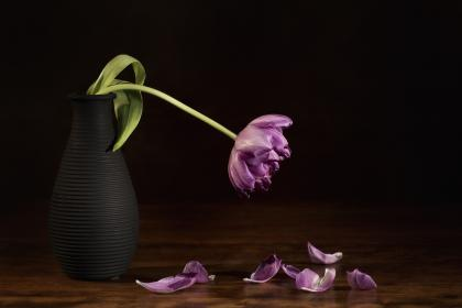 A purple flower droops in a black vase on a brown table.
