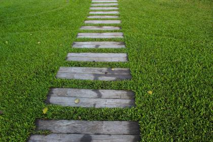 Wooden slats form a path on green grass